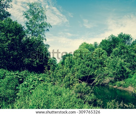 small forest river in dense thickets under blue skies - stock photo
