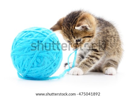 Small funny kitten and clew of thread . Isolated on white background