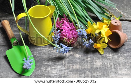 small garden tools and spring flowers on wooden background - stock photo