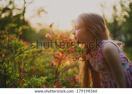 Small girl in park smelling a flower at sunset light  - stock photo