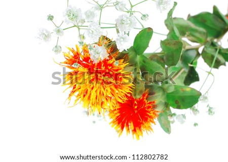 small gold flower with leave over white background - stock photo
