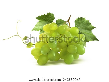 Small green grapes bunch and leaf isolated on white background as package design element - stock photo