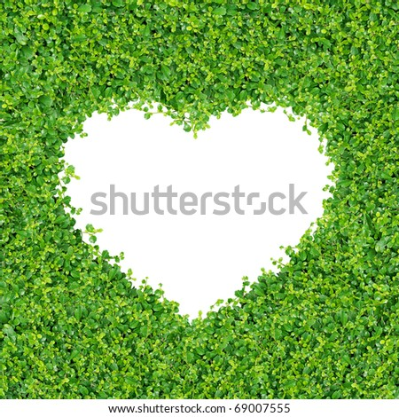 Small green plants and grass A heart shape. on on white background isolated - stock photo