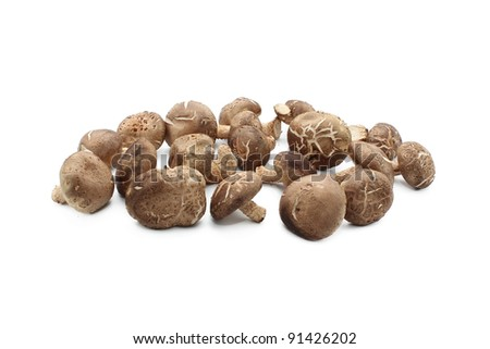 Small group of chinese or japanese mushrooms, isolated on white. - stock photo