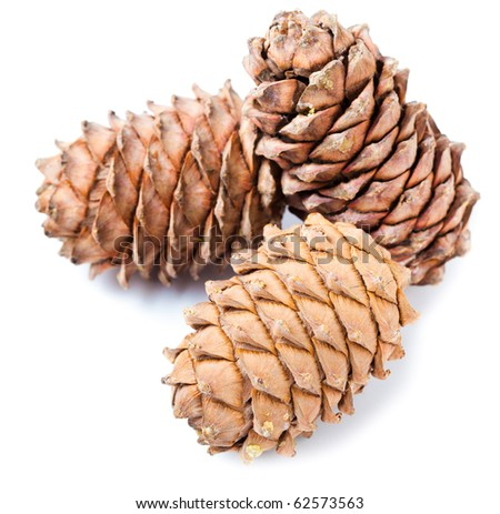 Small group of cones combined on a white background - stock photo
