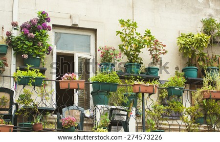 Small herb and flower garden built on terrace  - stock photo