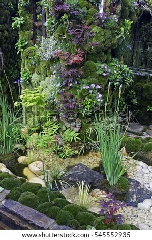 Small Japanese Garden Idea Moss Acers Stock Photo (Royalty Free ...