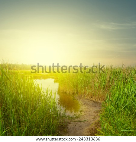 small lake at the evening - stock photo