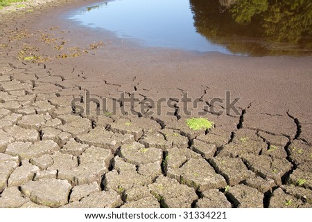 Small lake drying out in the summer - stock photo
