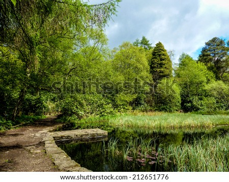 Small lochan at Mugdock Park, Scotland