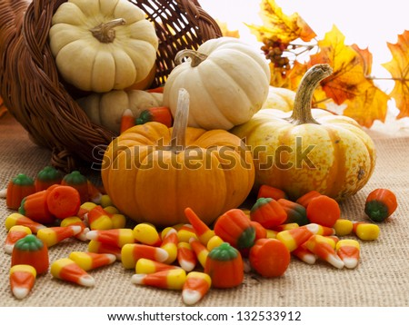 Small multi-color pumpkins and Halloween candies spilled from cornucopia.
