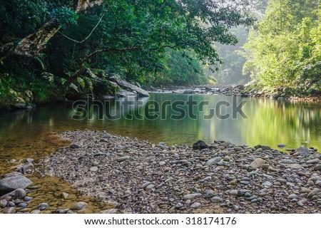 Small nature jungle river in Sabah Malaysian Borneo. - stock photo