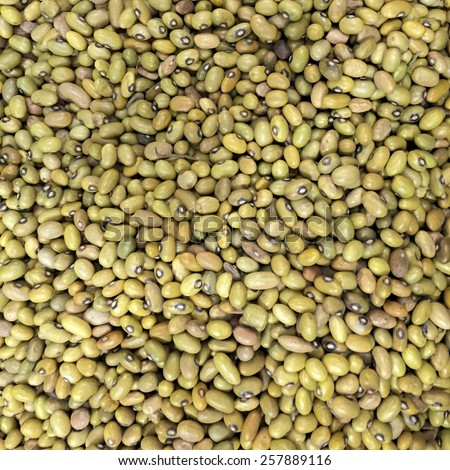 Small Navy, haricot, yellow pea, yellow kidney or Cannellini Purgatorio beans texture background or pattern. Raw legume food. - stock photo