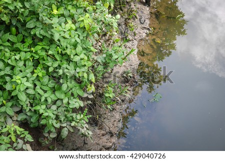 Small peaceful canal surrounded by green spring bushes - stock photo
