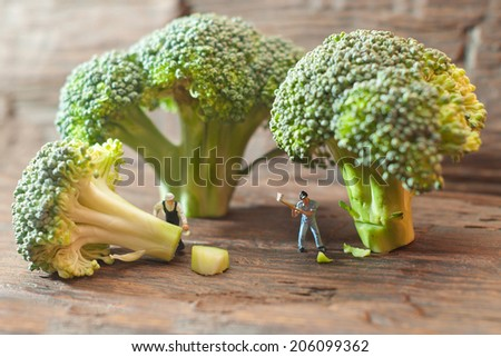 Small people cutting broccoli. The concept of cooking.  - stock photo