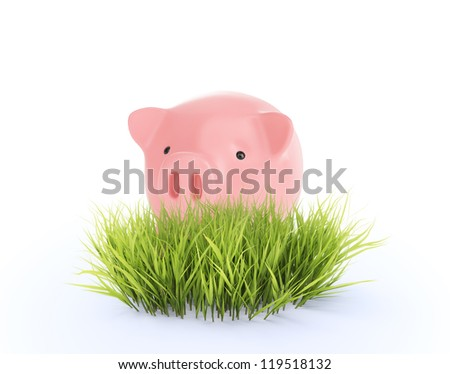 Small piggy bank behind a small patch of fresh grass