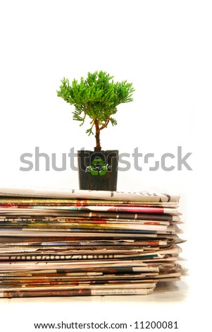 Small plant on top of a pile of newspapers - stock photo