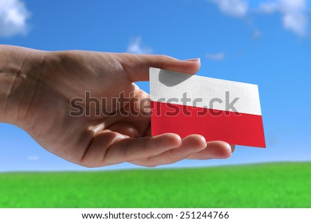 Small Polish flag against beautiful landscape - stock photo