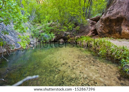Small Pond in Zion National Park, Utah - stock photo