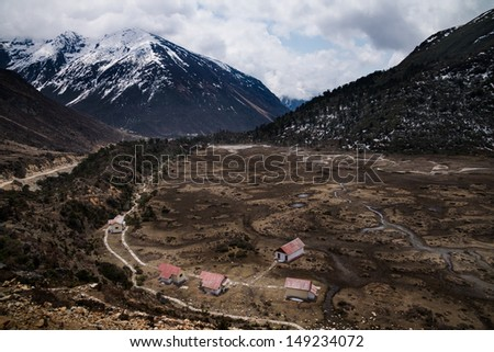 Small river flowing through chopta valley - stock photo