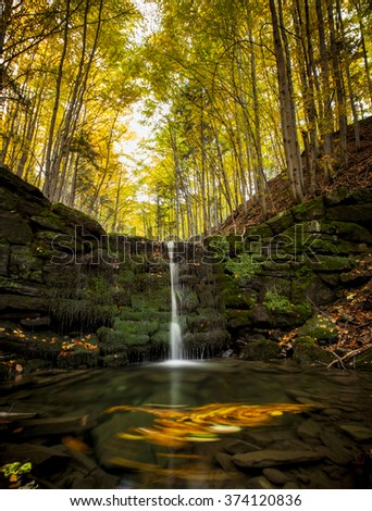 small river in the Polish forests - stock photo