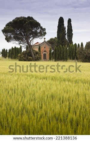 Small rural church in Tuscany landscape (Italy)