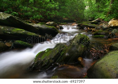small stream deep in the woods - stock photo