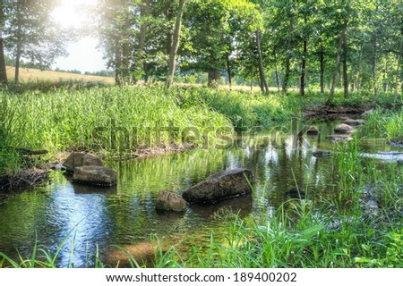 Small stream of water in a serene green summer landscape in Finland Europe with rays of sunlight