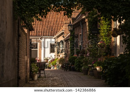 Small street with plants and flowers in historic Dutch city Buren, The Netherlands - stock photo