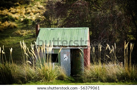 Small tin hut with open door and grasses nearly as tall as it