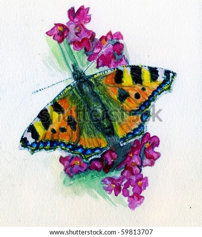 Small Tortoiseshell Butterfly On Pink Flowers. - stock photo