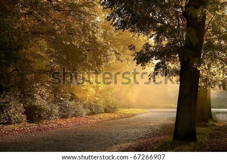 Small town avenue among autumn trees at dusk. - stock photo