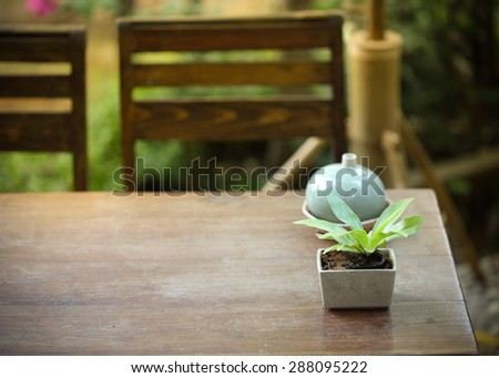 small tree in the pot plant decorated on wooden table - stock photo