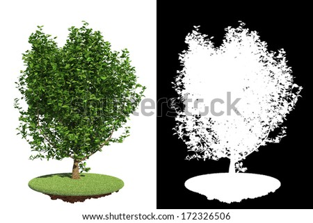 Small Tree on Grass Island Isolated on White Background with Detail Raster Mask. - stock photo