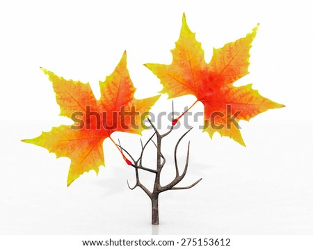 small tree with autumn leaves - stock photo