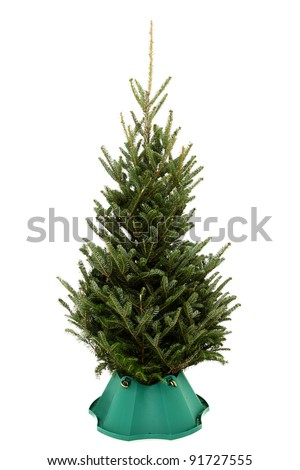 small undecorated christmas tree in plastic tree stand over white background stock photo - Plastic Christmas Tree