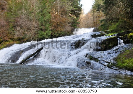 Small water fall located in Alsea Falls, Oregon. - stock photo