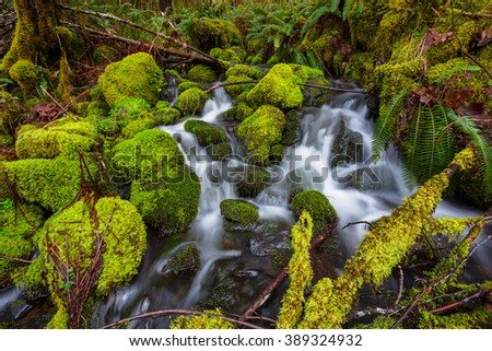 Small waterfall cascade flowing into the McKenzie River in Oregon. - stock photo