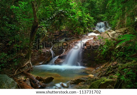 Small waterfall in deep jungle forest. Creek stream and green plants environment - stock photo