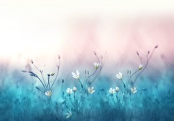 Free flowers stock photos stockvault small white flowers on a toned on gentle soft blue and pink background outdoors close mightylinksfo