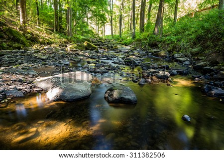 small wild river brtnicka in Bohemian forest on Vysocina