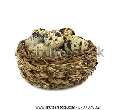Small wood basket with quail eggs  - stock photo