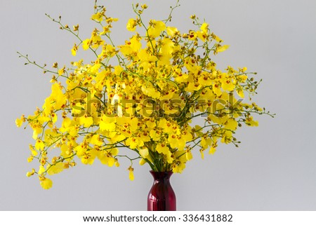 Small yellow orchid flowers in red vase - stock photo