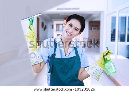 Smiling asian woman cleaning a window with glass cleaner - stock photo