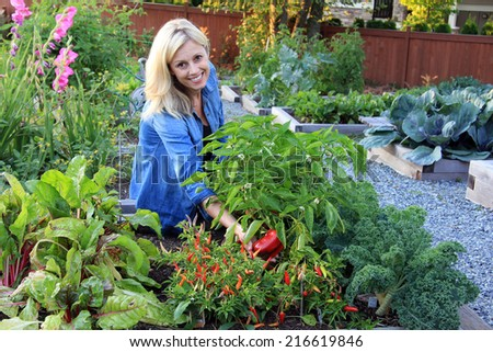 Smiling blond woman in the vegetable garden. - stock photo