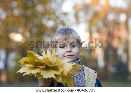 Smiling boy with autumn leaves - stock photo