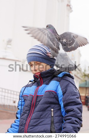 Smiling boy with dove on head - stock photo