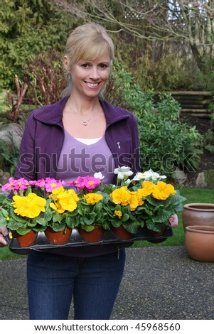 Smiling gardener with primulas ready to be planted. Also available in horizontal. - stock photo