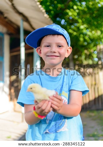 Smiling little boy holding a cute fluffy young chick cupped in his hands held extended towards the camera, focus to boy - stock photo