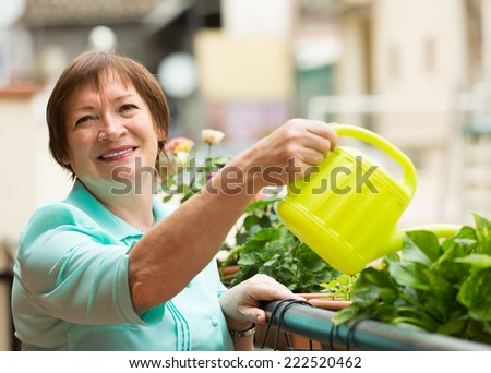 Smiling positive aged woman watering decorative flowers on balcony - stock photo